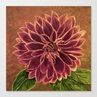 dahlia Canvas Prints featuring Dahlia  by maggs326