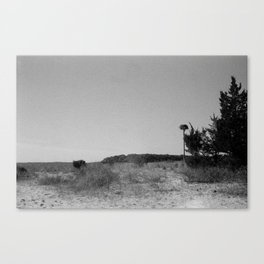 View from The Shack Canvas Print