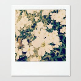 in the softness of white Canvas Print