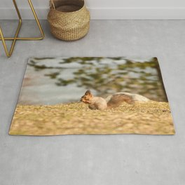 Squirrel's Lunch Break #decor #society6 #buyart Rug