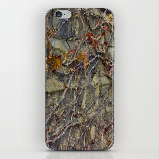 Wall climbers iPhone & iPod Skin