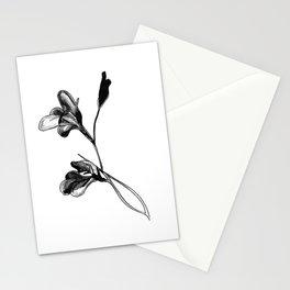 Gladiolus Stationery Cards