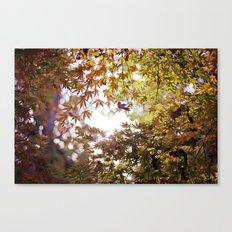 Autumn Light Canvas Print