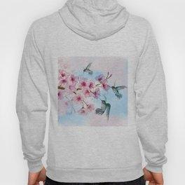 Cherry Blossom and Hummingbirds Hoody