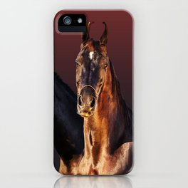 horse collection iPhone Case