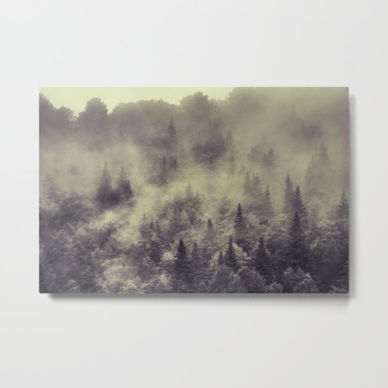 """""""Into the woods"""" Love the forests Metal Print"""