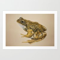 frog Art Prints featuring  frog by Diane Nicholson