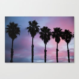 Palms at Dusk Canvas Print