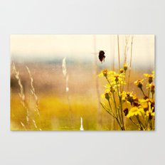 the heat on her back ... Canvas Print