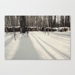 A Theif Comes Canvas Print