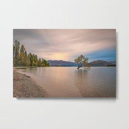 New Zealand Wanaka Tree Sunset Peaceful Landscape Metal Print