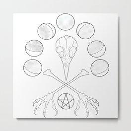 Bird Moon Metal Print