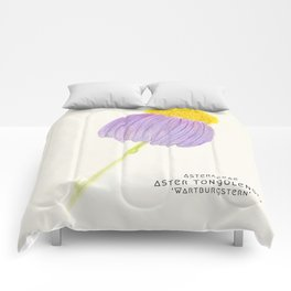 Botanical Sketches 3: East Indies Aster Comforters