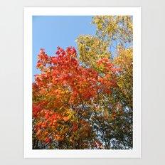 Autumn Leaves II Art Print