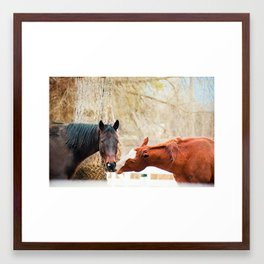 True Friends. I think we're being watched. Framed Art Print