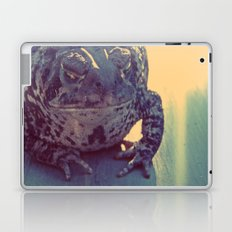 Leeper Laptop & iPad Skin