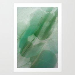 Fleur Blur Series-Abstract Eucalyptus Leaves Art Print