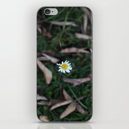 The Lone Flower iPhone Skin