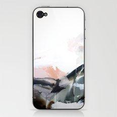 1 3 1  iPhone & iPod Skin