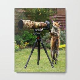 Fox the Photographer Metal Print