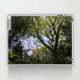 Tree Branches Laptop & iPad Skin