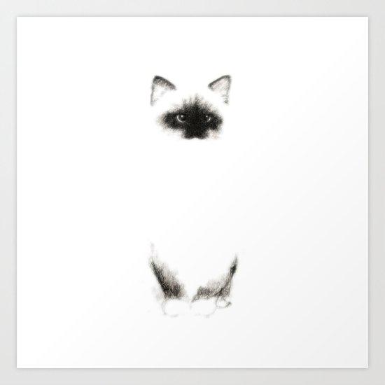 Angora Siamese Cat - png version - Chat Siamois Angora Art Print