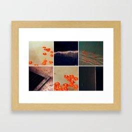 3046 Framed Art Print