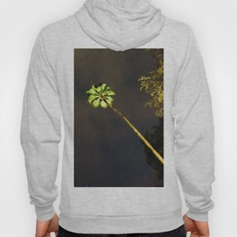 Palm Tree Hoody