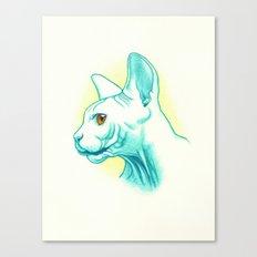 Sphynx cat #01 Canvas Print
