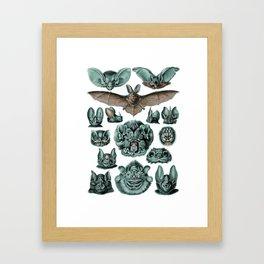 Bats in Blue by Haeckel Framed Art Print