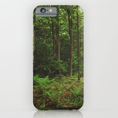 Pathfinder II iPhone 6s Slim Case
