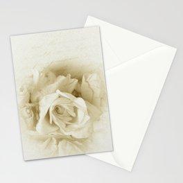 Vintage Elegant Shabby Chic White Rose Script Stationery Cards