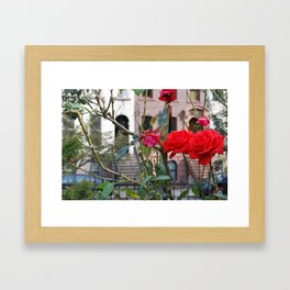 Red Roses in front of Brownstones Framed Art Print