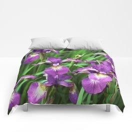 LILAC PURPLE IRIS GARDEN Comforters