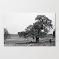 luke hemmings Canvas Prints featuring Luke by WeTheConspirators