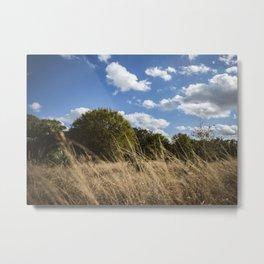 Fields of Tan, Trees of Green Metal Print