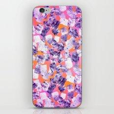 tear down (variant) iPhone & iPod Skin
