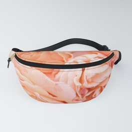 Coral Roses | Ostuni botanical garden photography | Puglia Italy Fanny Pack