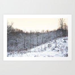 Snowfall at Brickworks on Christmas Day, 2020. LXXXV Art Print