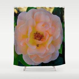 Peachy by Teresa Thompson Shower Curtain