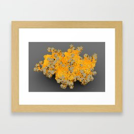 Silverched Dodeka Framed Art Print