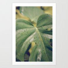 Philomena Philodendron Art Print