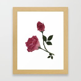 Mystical Maroon Rose Framed Art Print