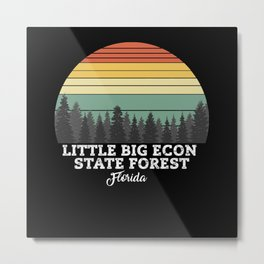 Little Big Econ State Forest Florida Metal Print