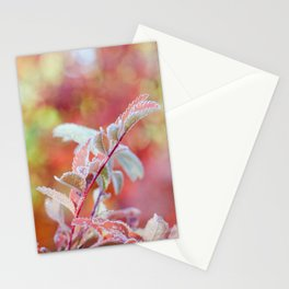 Mountain Ash Frozen In Pink Stationery Cards