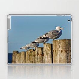 Seagulls on groynes Laptop & iPad Skin