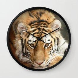 Tiger Eyes Wall Clock