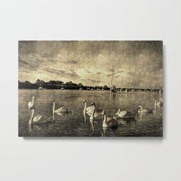 Serene Swans Vintage Metal Print
