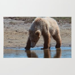 Grizzly Cub Drinking from Stream  Alaska Katmai National Park #Socety6 Rug