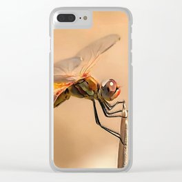 Painted Dragonfly Isolated Against Ecru Clear iPhone Case